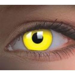 Yellow lenses (0)